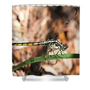 Dragonfly Closeup Shower Curtain