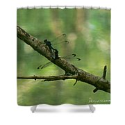 Dragonfly Hanky Panky Shower Curtain