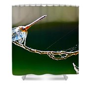 Dragonfly In The Wind Shower Curtain