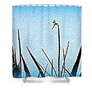 Dragonfly Magic Shower Curtain