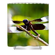 Dragonfly Stalking Shower Curtain