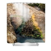 Dragon's Mouth Shower Curtain