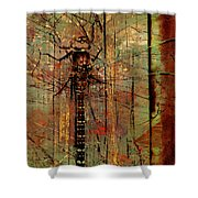 Dragons Wall  Shower Curtain by Empty Wall