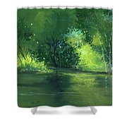 Dream 1 Shower Curtain by Anil Nene