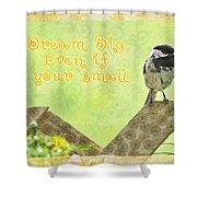 Dream Big Shower Curtain
