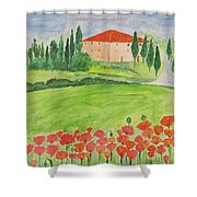 Dream Home Shower Curtain