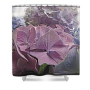 Dream Hydrangeas Shower Curtain