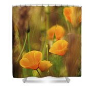 Dream Poppies Shower Curtain