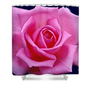 Dream Rose Shower Curtain