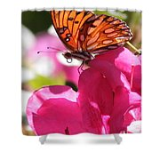 Dreaming Of Butterflies And Pink Flowers Shower Curtain