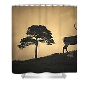 Dreaming Of Tomorrow Shower Curtain