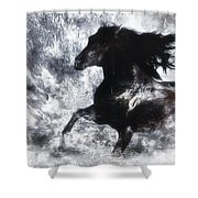 Dreamrider Shower Curtain