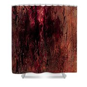 Dreams Forgotten Shower Curtain