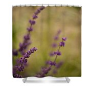 Dreamy Purple Shower Curtain