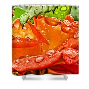 Drenched II Shower Curtain