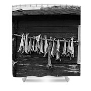 Dried Cod On A Line Shower Curtain by Heiko Koehrer-Wagner