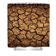 Dried Terrain Shower Curtain