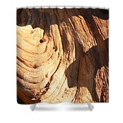 Driftwood 1 Shower Curtain