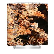 Driftwood 2 Shower Curtain