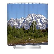 Driftwood And The Grand Tetons Shower Curtain