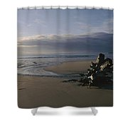 Driftwood And Tidal Pools, Victoria Shower Curtain