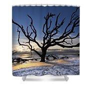 Driftwood Beach At Dawn Shower Curtain