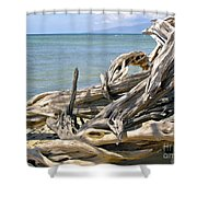 Driftwood II Shower Curtain