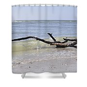 Driftwood In The Surf Shower Curtain