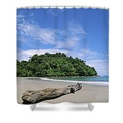 Driftwood On A Tropical Beach Bordered Shower Curtain