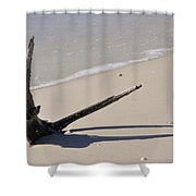 Driftwood Sun Dial Shower Curtain