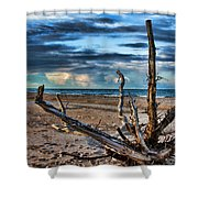Driftwood V2 Shower Curtain