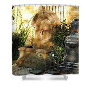 Drinking Fountains For Sale - Broadway Shower Curtain