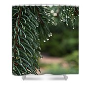 Drip Dry Shower Curtain