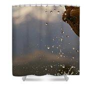 Dripping Fountain Shower Curtain