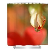 Dripping In Colors Shower Curtain