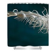 Drop On Top Shower Curtain