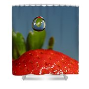 Droplet Falling On A Strawberry Shower Curtain