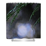 Drops In The Forest Shower Curtain