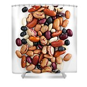 Dry Beans Shower Curtain by Elena Elisseeva