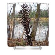 Dry Fern Stem In November Shower Curtain