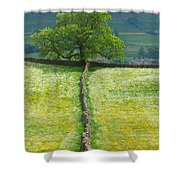 Dry Stone Wall And Lone Tree Shower Curtain