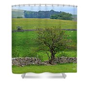 Dry Stone Wall And Twisted Tree Shower Curtain