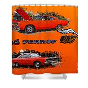 Dual Roadrunner Abstract Shower Curtain