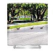 Duck Crossing Shower Curtain