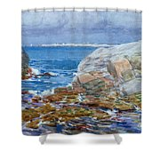 Duck Island Shower Curtain