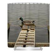 Duck Ramp Shower Curtain