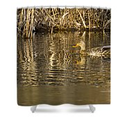 Duck Ripples Shower Curtain