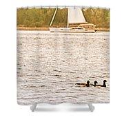 Duck Sailing Shower Curtain