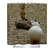 Duck With Rock Sculpture Shower Curtain