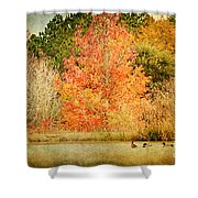 Ducks In An Autumn Pond Shower Curtain